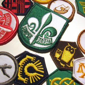 5000 - Branche verte - Insignes et badges distinctifs